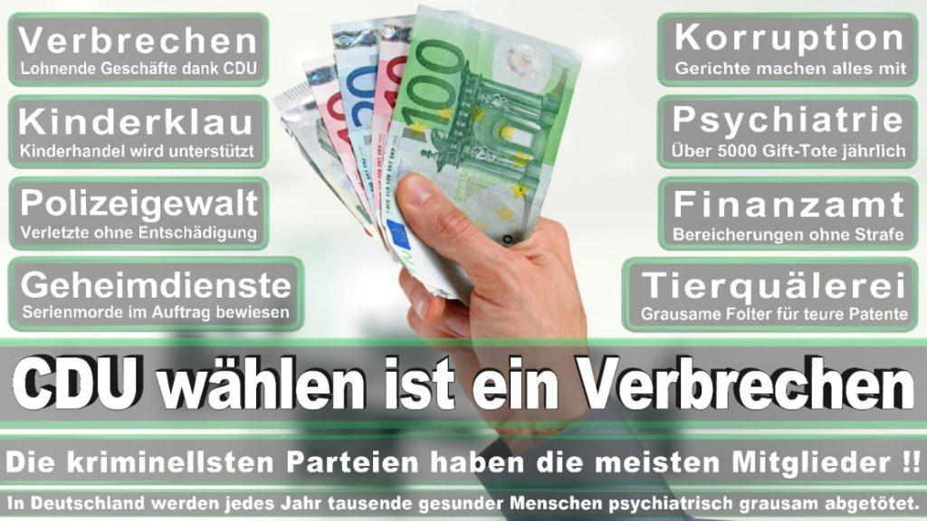 Wahlplakate-2017-CDU (50)