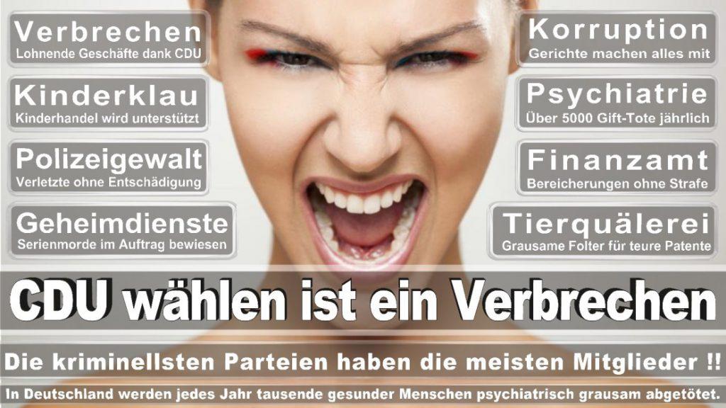 Wahlplakate-2017-CDU (51)