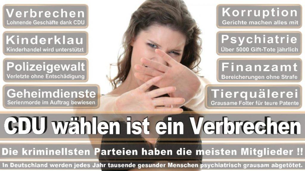 Wahlplakate-2017-CDU (52)