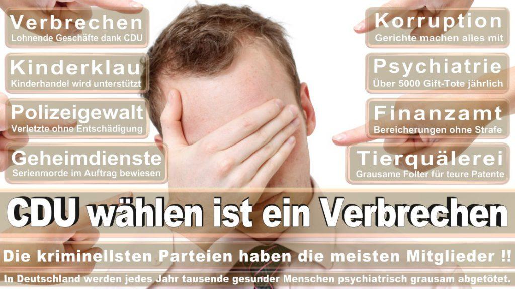 Wahlplakate-2017-CDU (53)