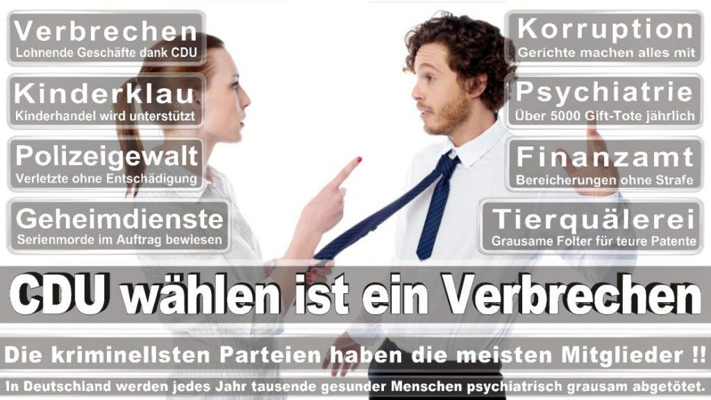 Wahlplakate-2017-CDU (54)