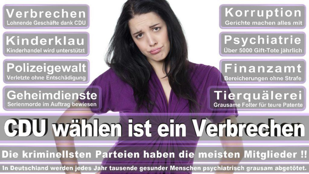 Wahlplakate-2017-CDU (55)