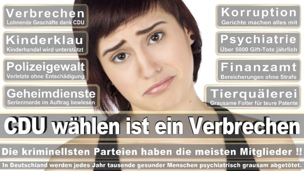 Wahlplakate-2017-CDU (56)