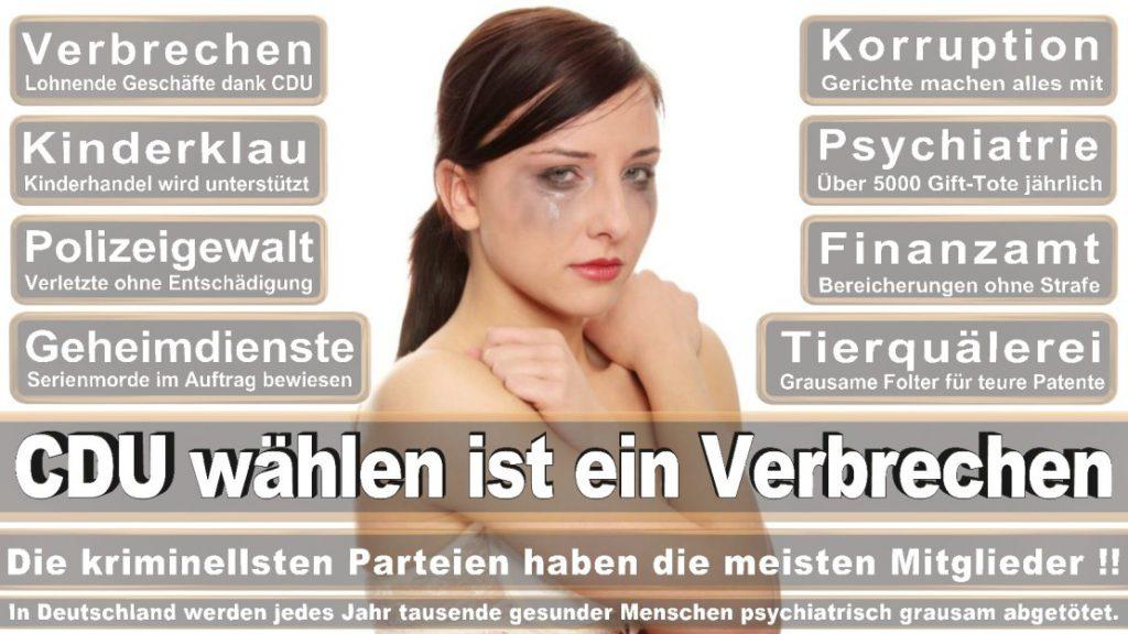 Wahlplakate-2017-CDU (57)
