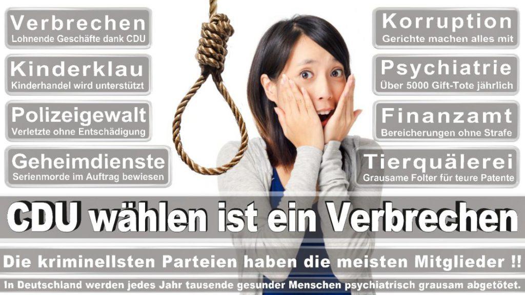 Wahlplakate-2017-CDU (58)