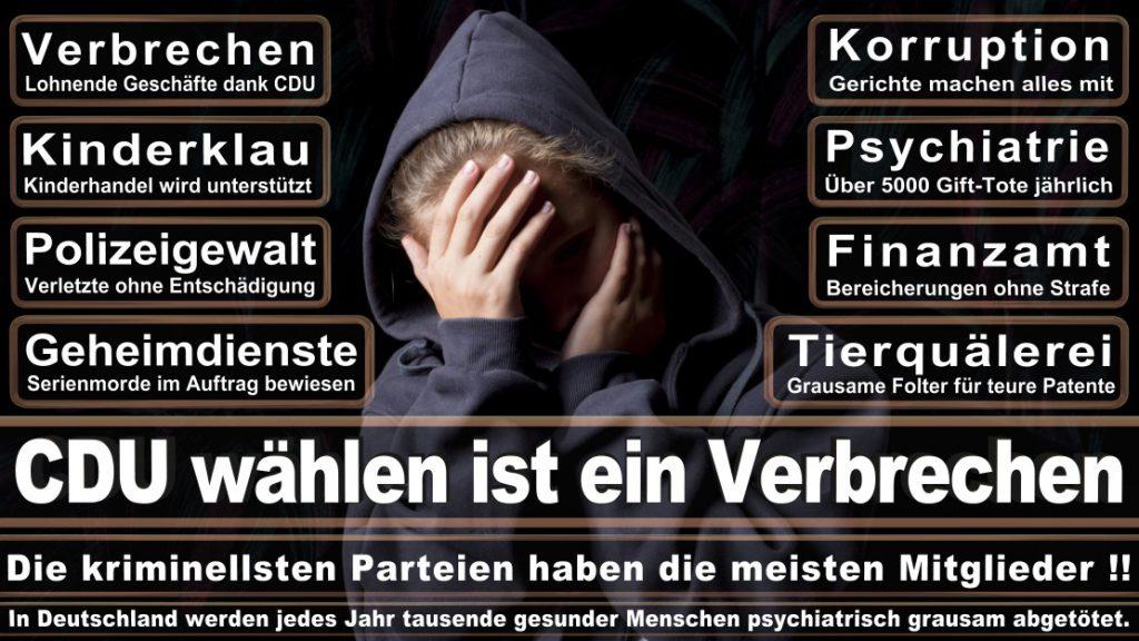 Wahlplakate-2017-CDU (59)