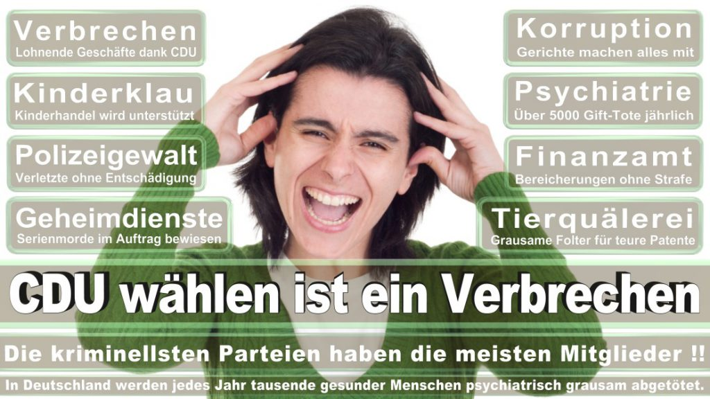 Wahlplakate-2017-CDU (6)