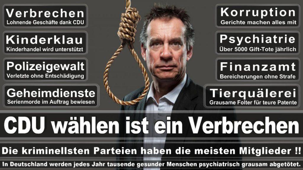 Wahlplakate-2017-CDU (60)