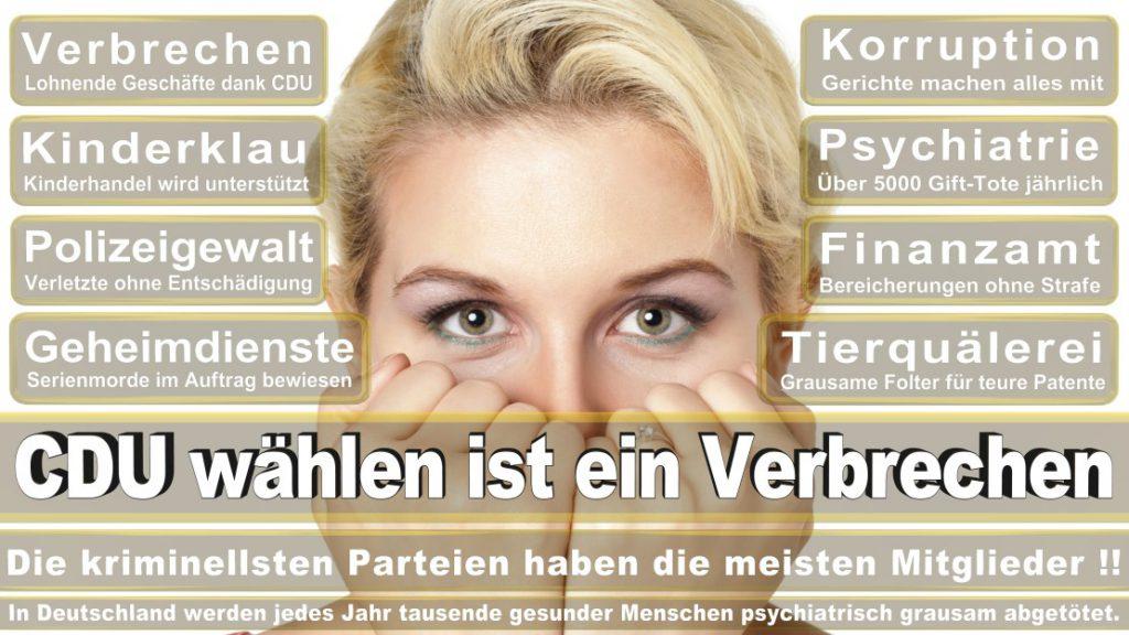 Wahlplakate-2017-CDU (61)