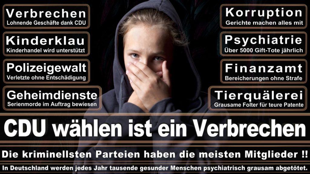Wahlplakate-2017-CDU (62)