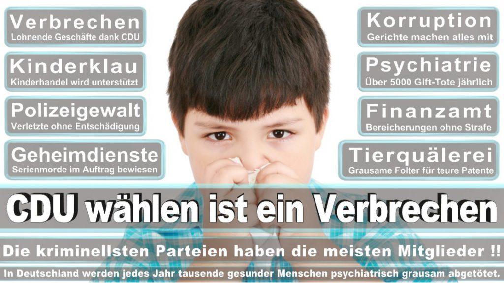 Wahlplakate-2017-CDU (63)