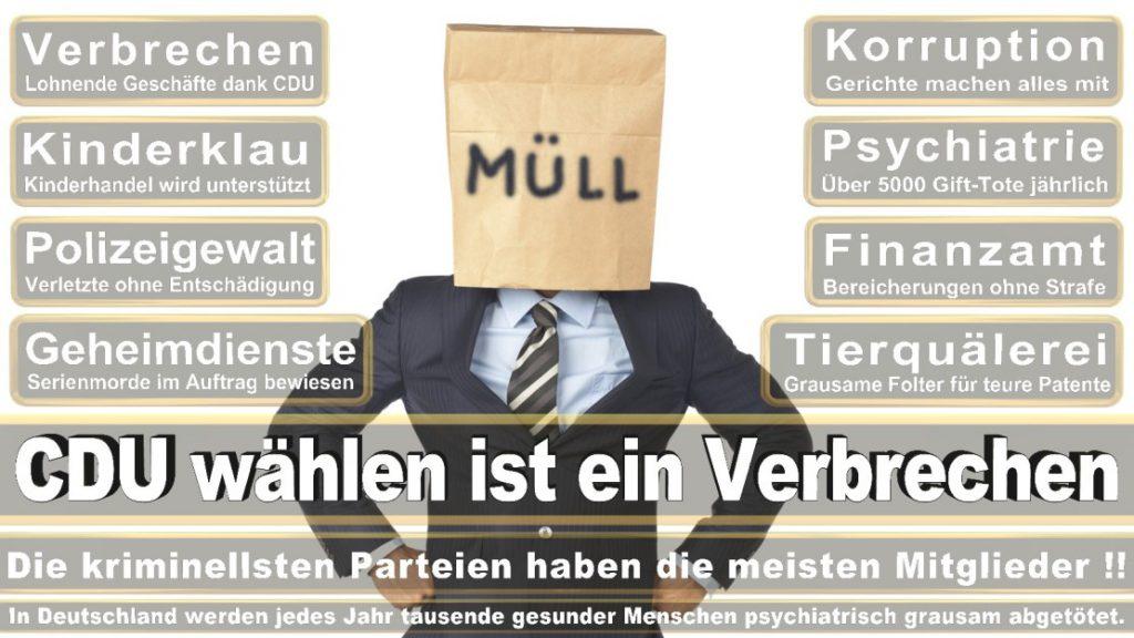Wahlplakate-2017-CDU (64)