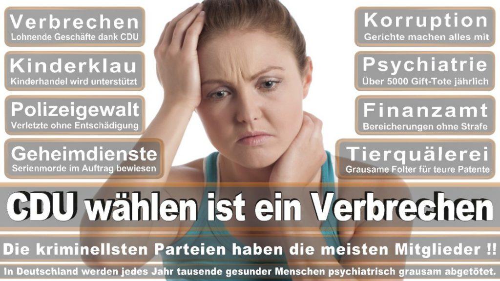 Wahlplakate-2017-CDU (65)
