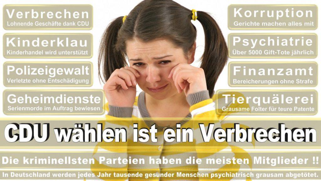 Wahlplakate-2017-CDU (66)
