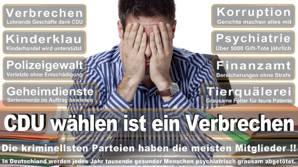 Wahlplakate-2017-CDU (67)