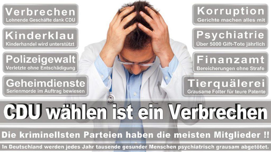 Wahlplakate-2017-CDU (68)