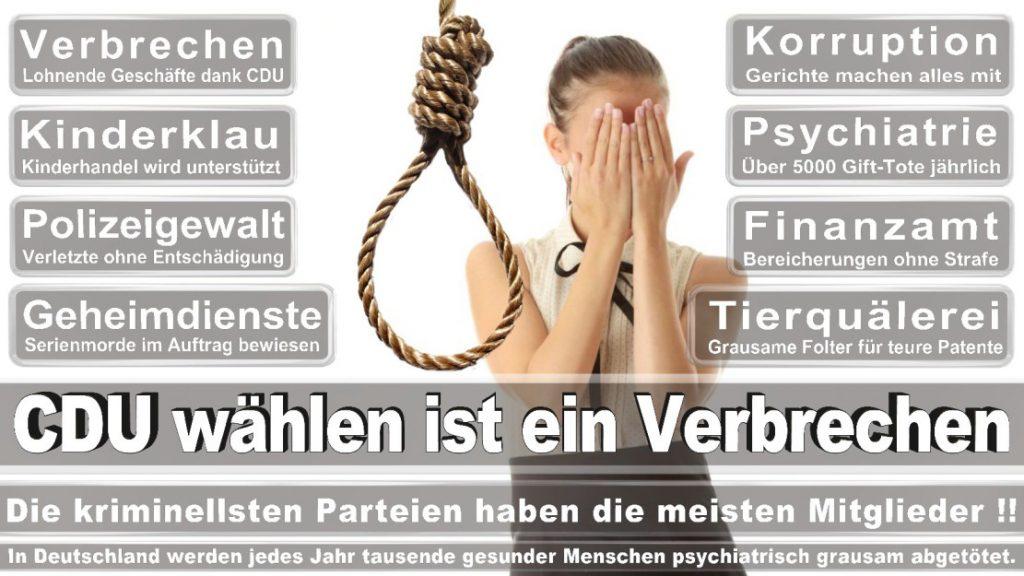 Wahlplakate-2017-CDU (69)