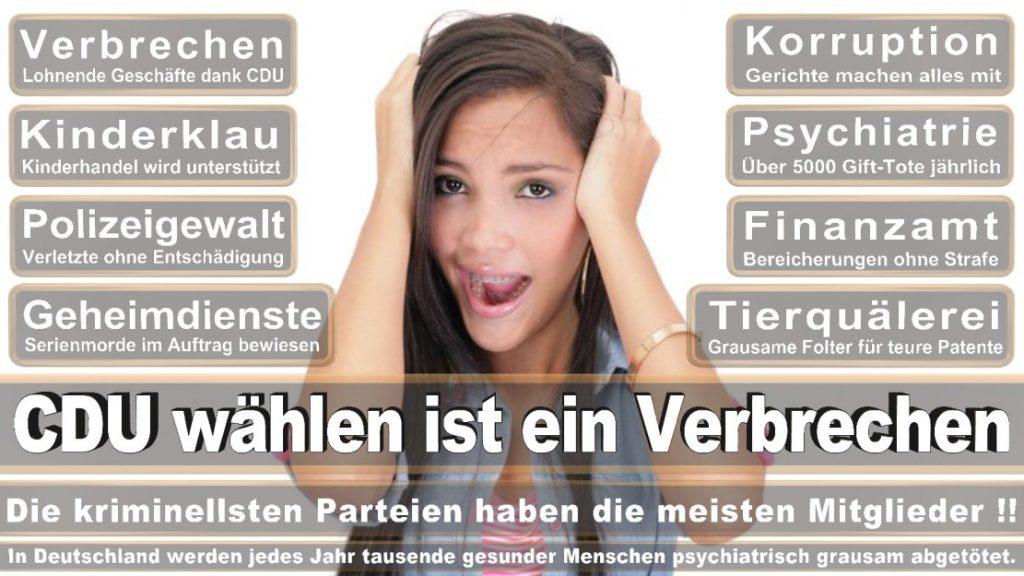 Wahlplakate-2017-CDU (7)