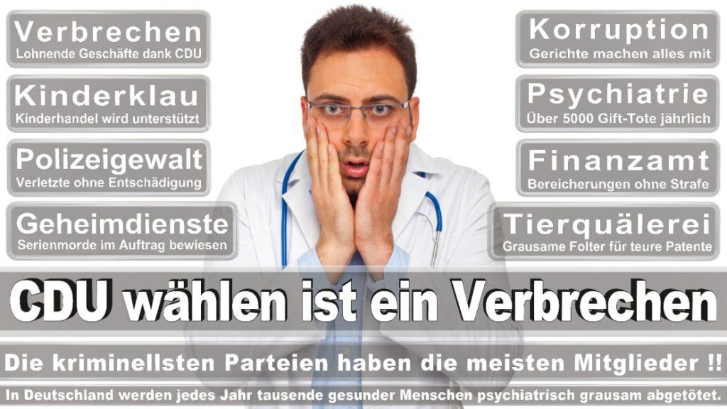 Wahlplakate-2017-CDU (70)