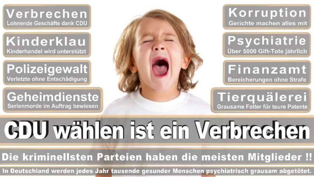 Wahlplakate-2017-CDU (71)