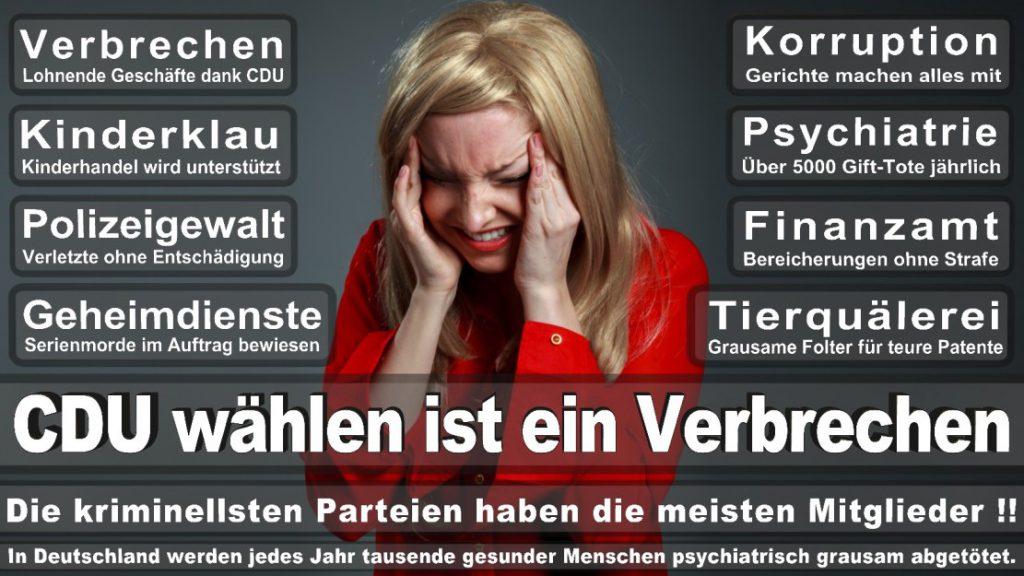 Wahlplakate-2017-CDU (72)