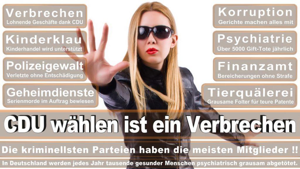 Wahlplakate-2017-CDU (73)