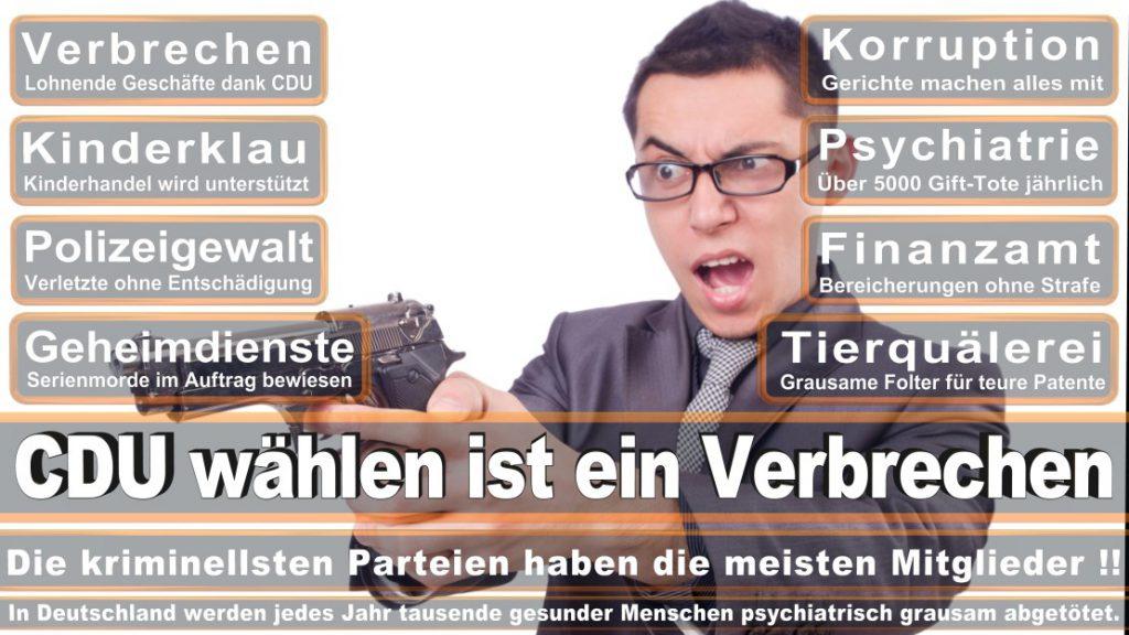 Wahlplakate-2017-CDU (74)