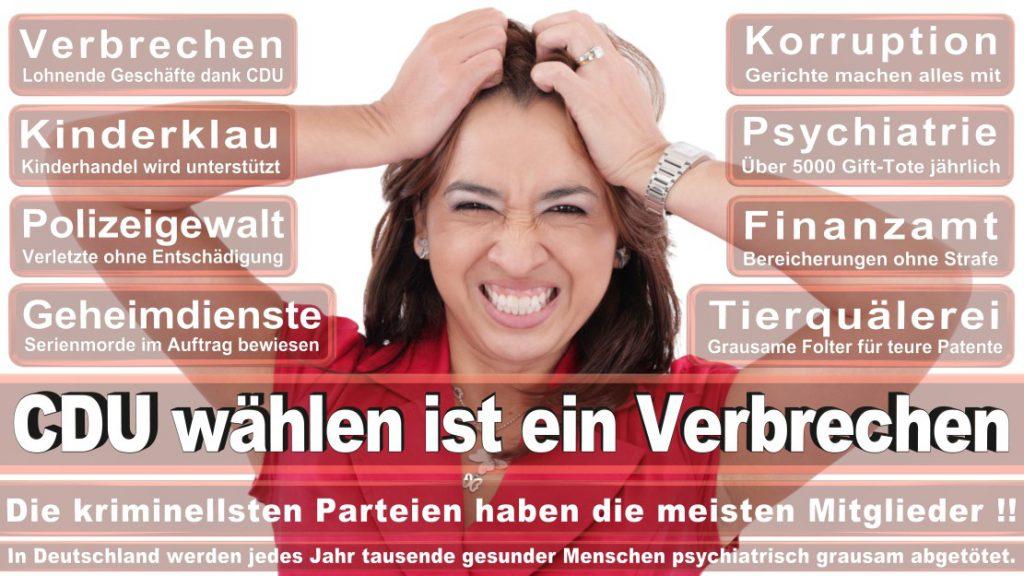Wahlplakate-2017-CDU (75)