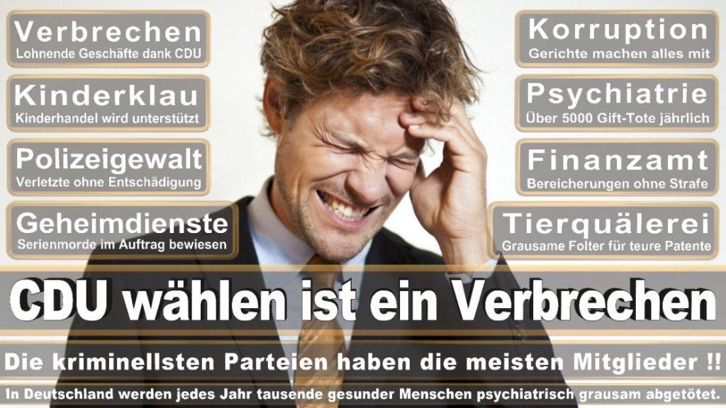 Wahlplakate-2017-CDU (76)
