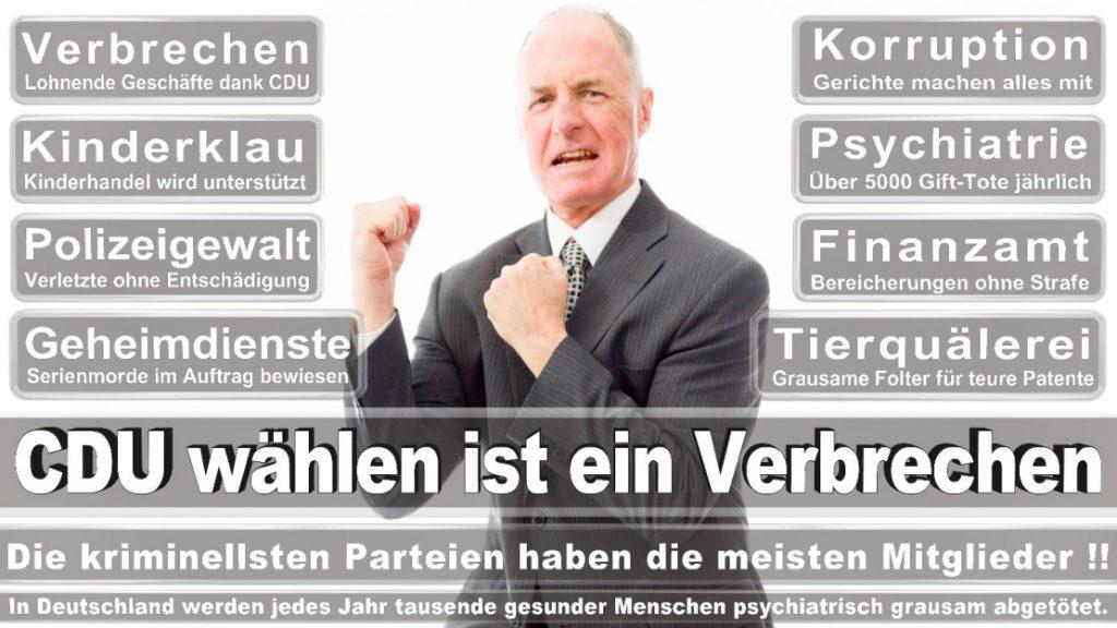 Wahlplakate-2017-CDU (77)