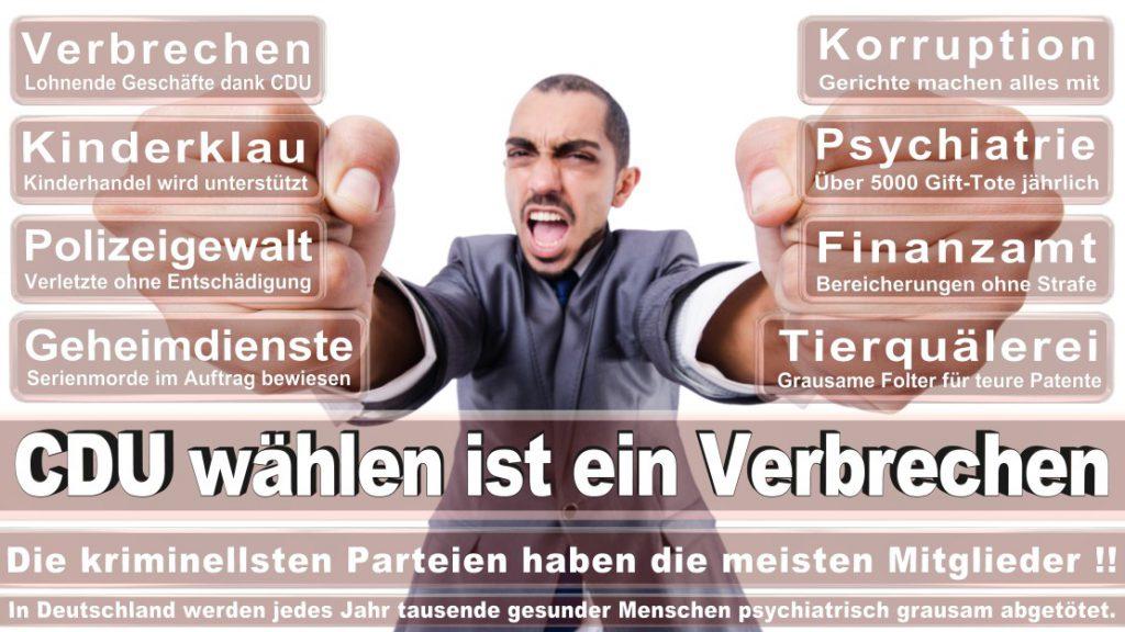 Wahlplakate-2017-CDU (78)