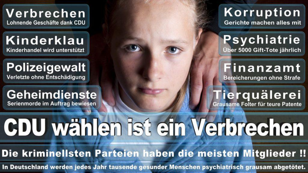 Wahlplakate-2017-CDU (79)
