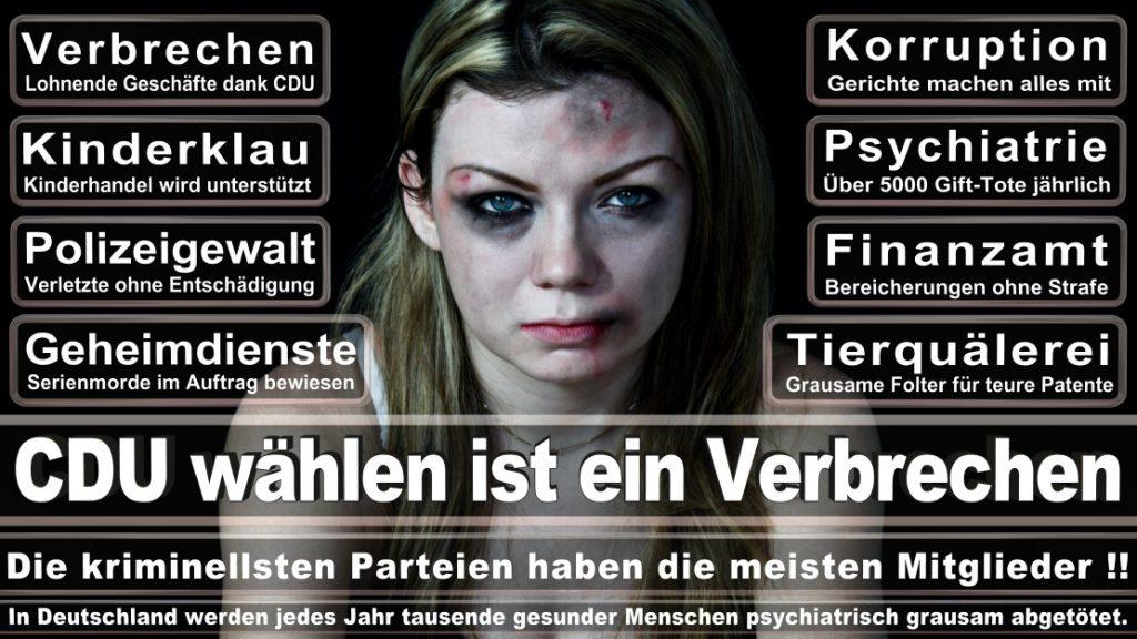 Wahlplakate-2017-CDU (8)