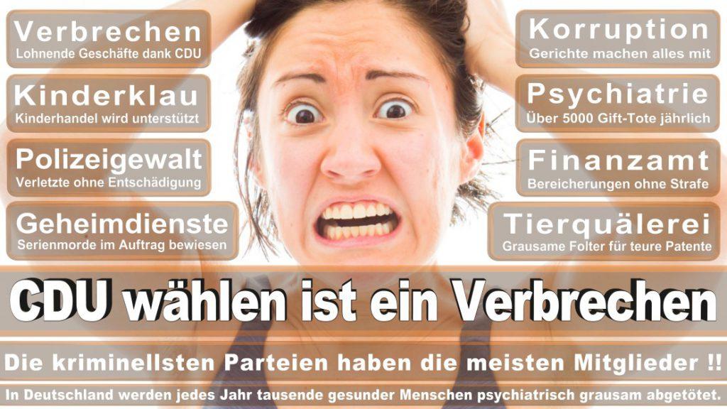 Wahlplakate-2017-CDU (80)