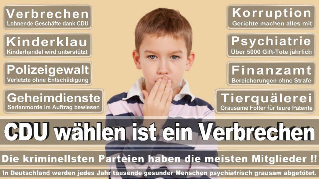 Wahlplakate-2017-CDU (81)
