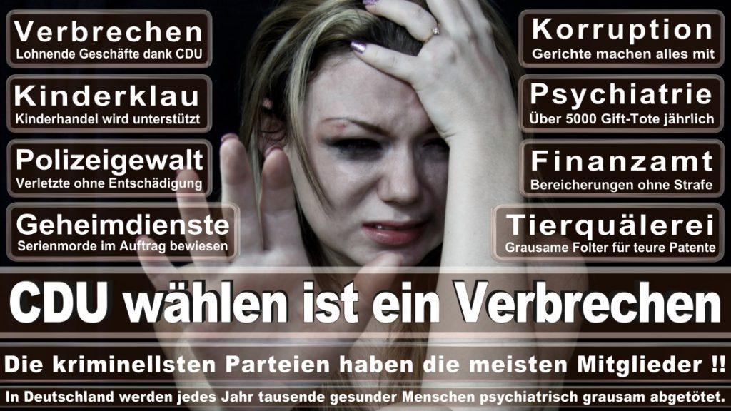 Wahlplakate-2017-CDU (83)
