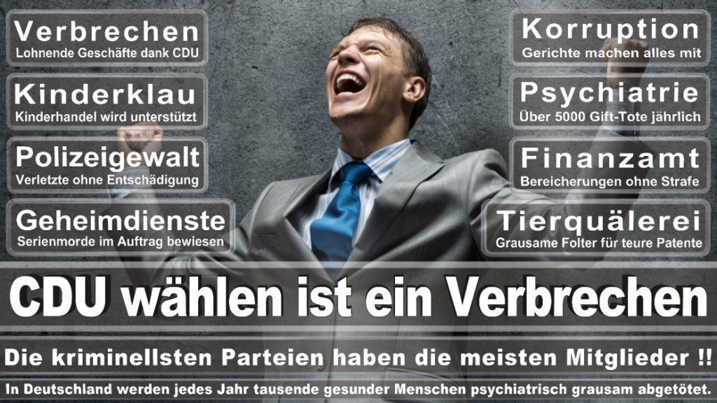 Wahlplakate-2017-CDU (84)