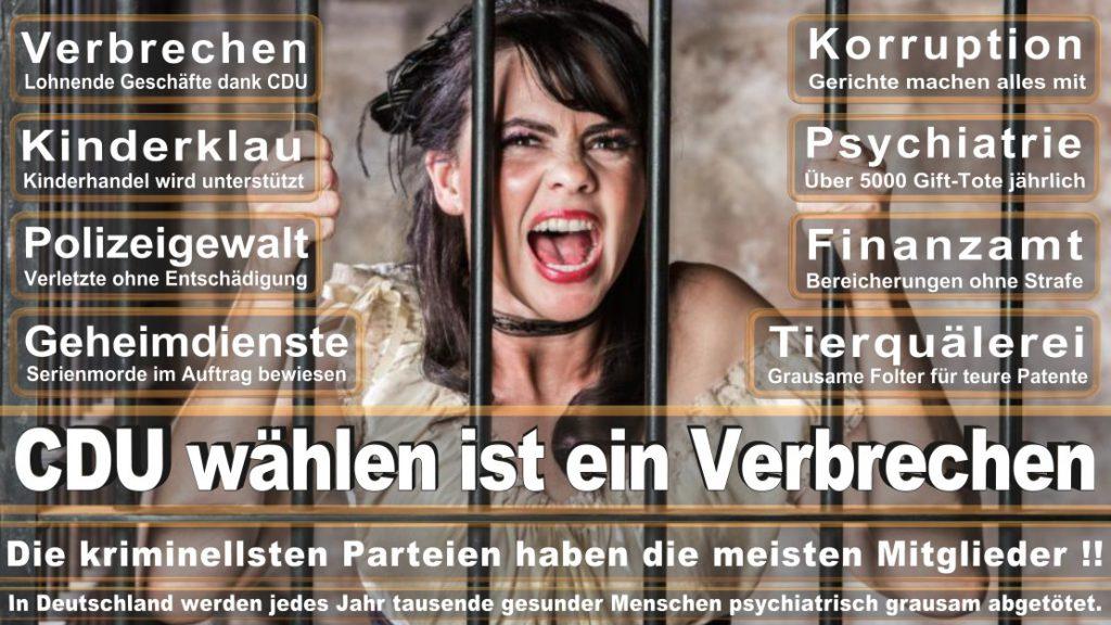 Wahlplakate-2017-CDU (86)