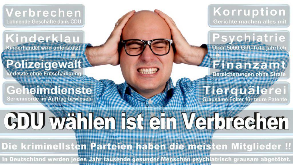 Wahlplakate-2017-CDU (87)