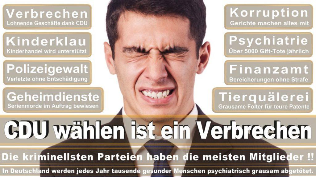 Wahlplakate-2017-CDU (88)