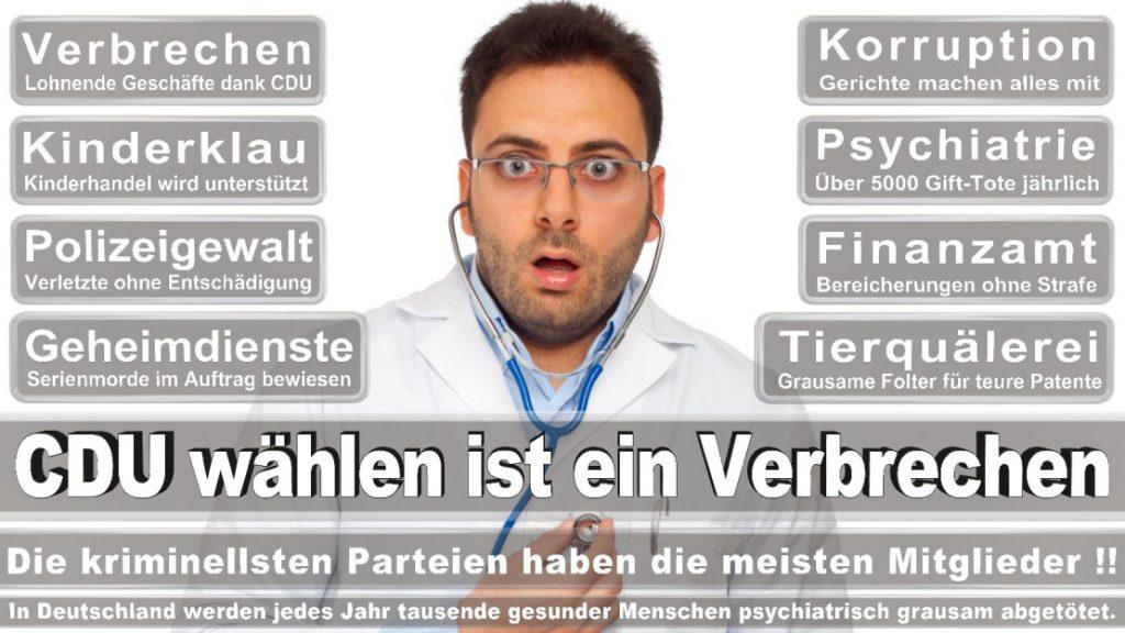 Wahlplakate-2017-CDU (89)