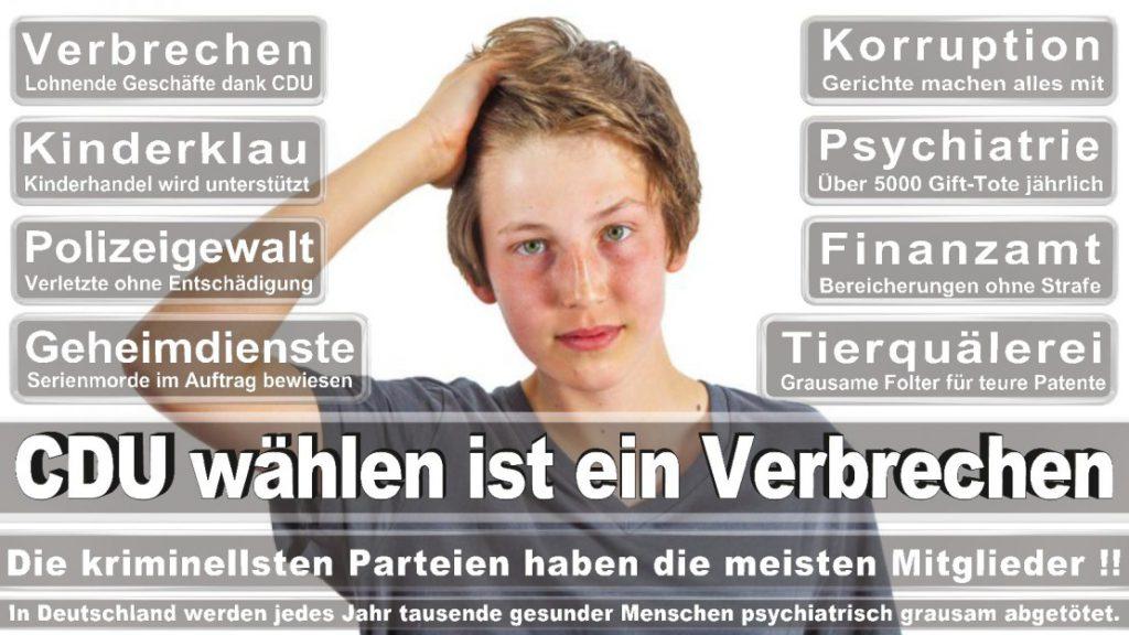 Wahlplakate-2017-CDU (9)