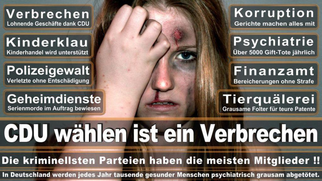 Wahlplakate-2017-CDU (90)