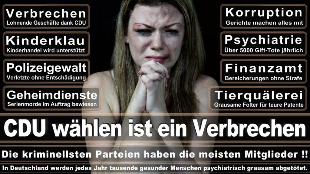 Wahlplakate-2017-CDU (91)