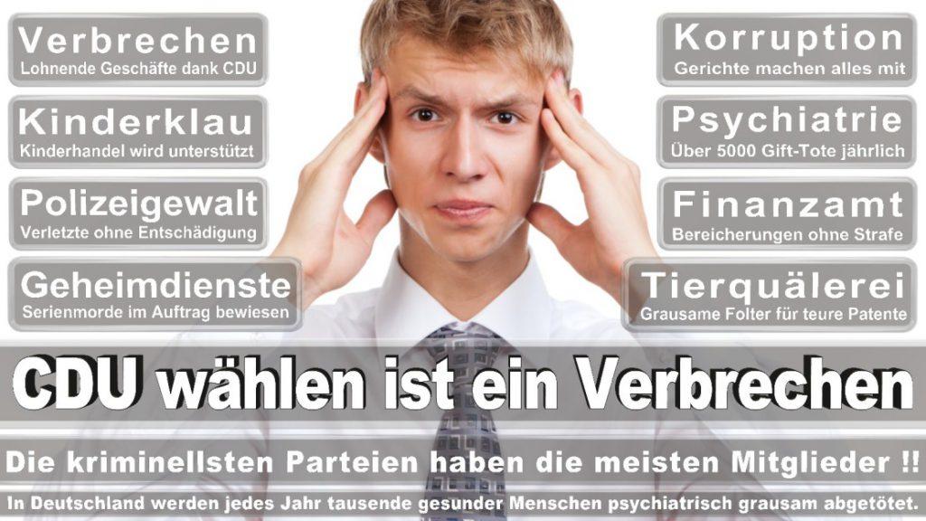 Wahlplakate-2017-CDU (92)