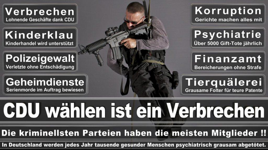 Wahlplakate-2017-CDU (93)