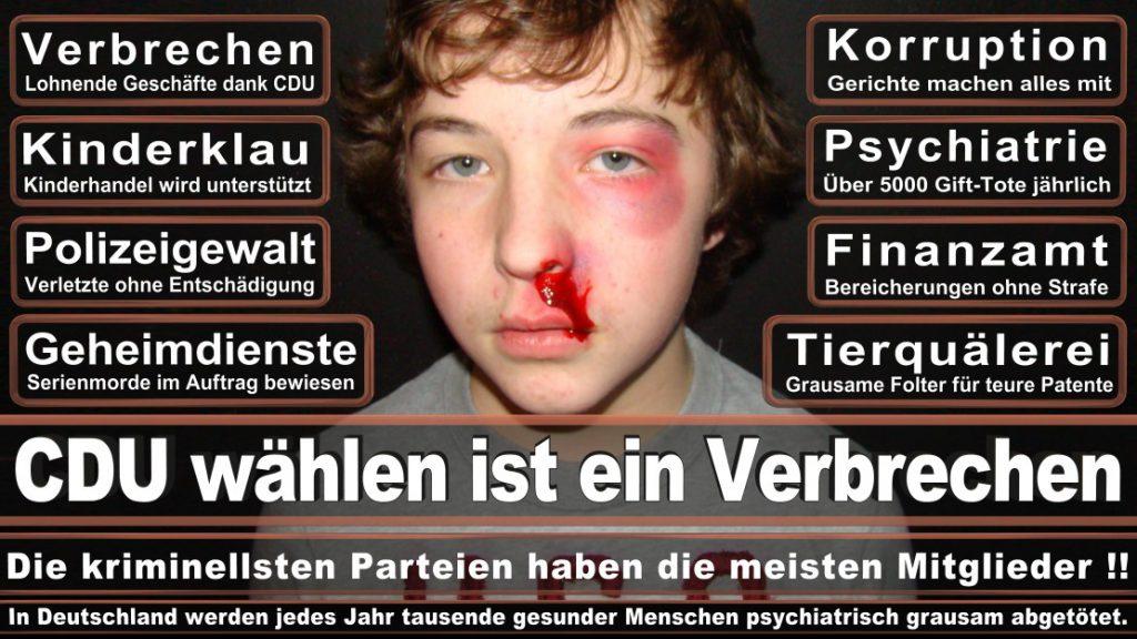 Wahlplakate-2017-CDU (94)