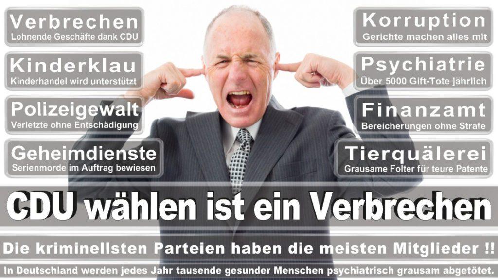 Wahlplakate-2017-CDU (95)