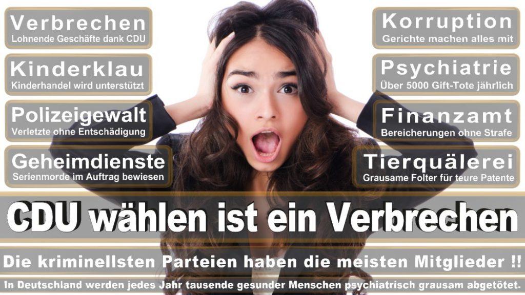 Wahlplakate-2017-CDU (96)