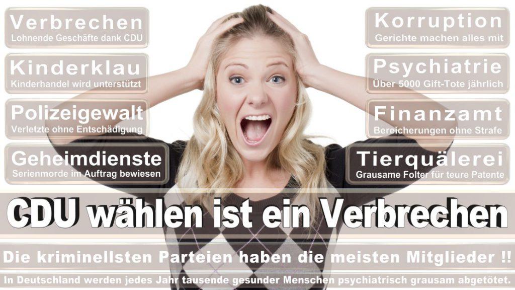 Wahlplakate-2017-CDU (97)